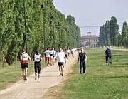 Donbosco running